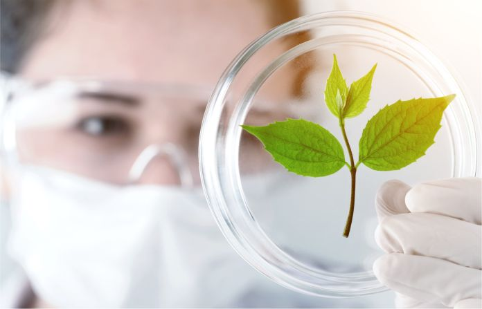 Nanofertilizer use for sustainable agriculture: Advantages and limitations